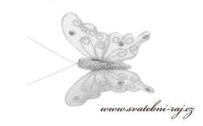 Stříbrný motýlek