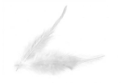 Dekorační peří bílé