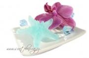 Zobrazit detail - Mýdlo ve tvaru mořské hvězdice