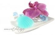 Zobrazit detail - Mýdlo střední mušlička