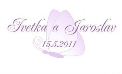 Logo motýl