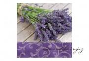 Zobrazit detail - Ubrousky Provence
