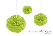 Pom Poms jablíčkově zelené, průměr 30 cm