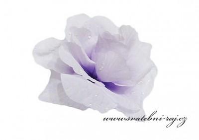 Vazbová růže
