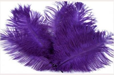 Luxusní pštrosí peří fialové