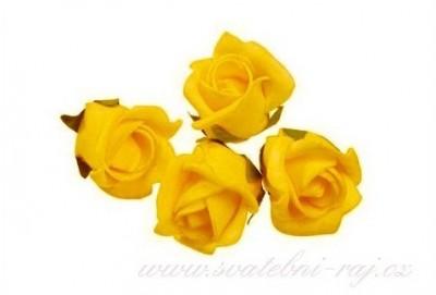 Pěnová růže žlutá
