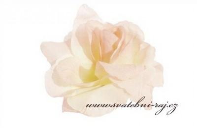 Taftová růže svatební