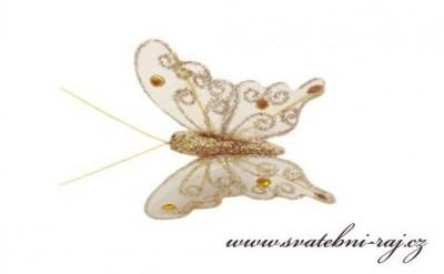 Zlatý motýl se třpytkami
