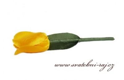 Svatební tulipán
