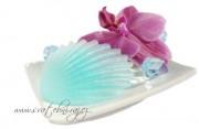Zobrazit detail - Mýdlo velká mušlička