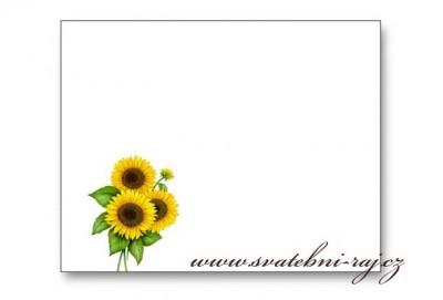 Jmenovka slunečnice