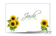 Zobrazit detail - Svatební jmenovka slunečnice