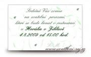 Zobrazit detail - Pozvánka na oslavu s lístečky