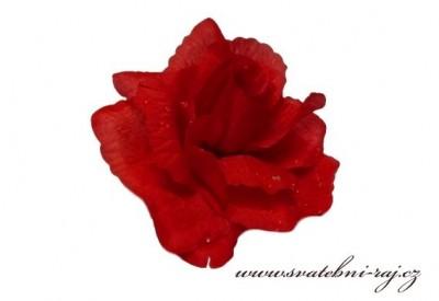 Vazbová růže červená