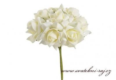 Pěnová růže aranžérská