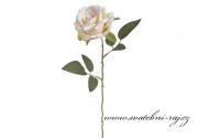 Růže krémová na stonku