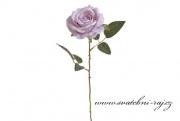 Růže lila na stonku