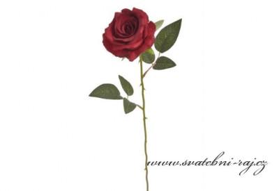 Růže vínová na stonku