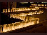 Dekorativní svítilna bílá srdce