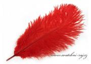 Zobrazit detail - Luxusní pštrosí peří červené