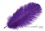 Zobrazit detail - Luxusní pštrosí peří fialové