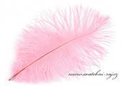 Zobrazit detail - Luxusní pštrosí peří růžové