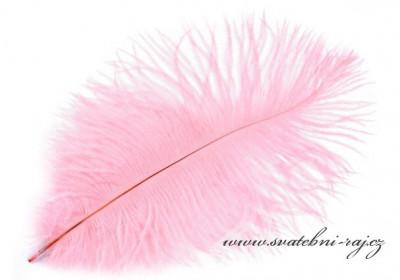 Luxusní pštrosí peří růžové