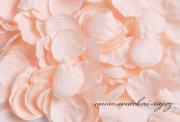 Zobrazit detail - Okvětní plátky lososové