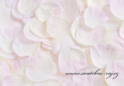Zobrazit detail - Okvětní plátky smetanovo-růžové