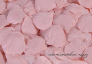 Zobrazit detail - Okvětní plátky v barvě bridal rose
